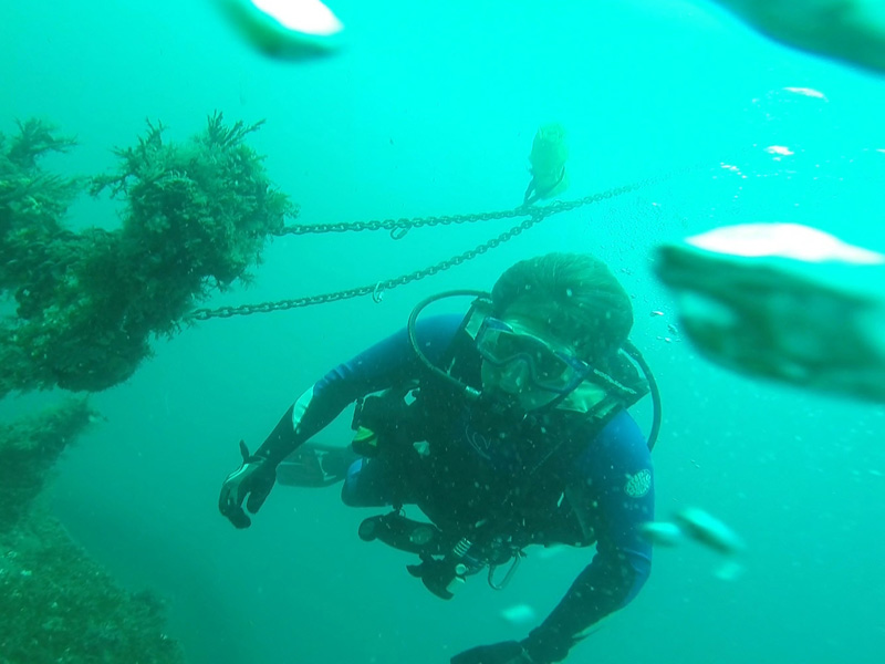 Scuba Diving To Do In Myrtle Beach